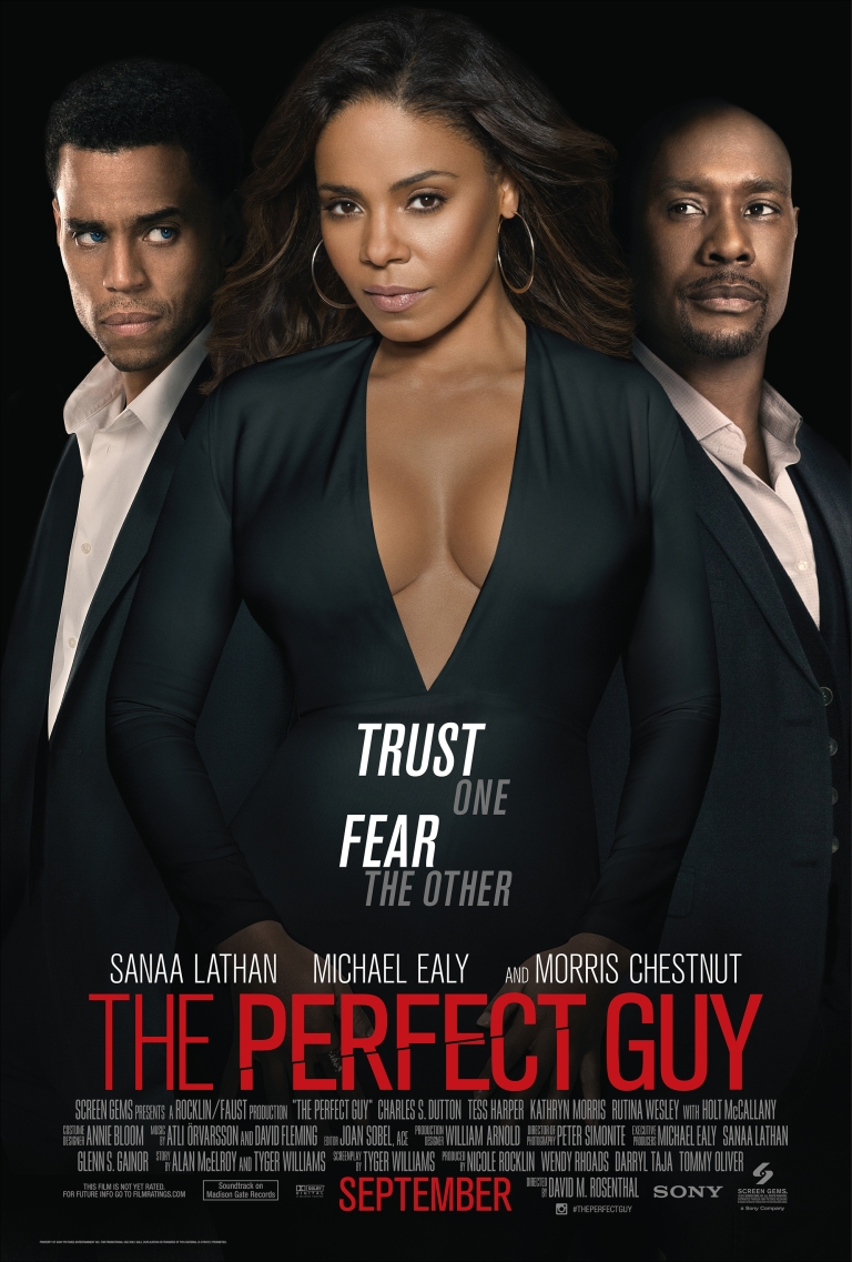 The-Perfect-Guy-Poster-3