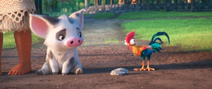 pig-and-rooster-moana